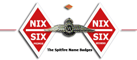 "The two Woolworth Spitfires carried the names ""Nix over Six Primus"" and ""Nix over Six Secundus"" (dog Latin for nothing over sixpence)."